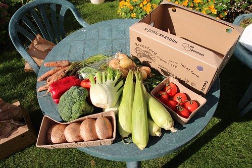 Riverford's Seasons vegbox