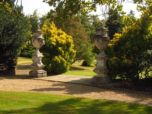 Beale Arboretum