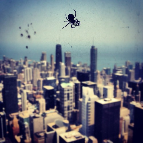 Windy City Spider