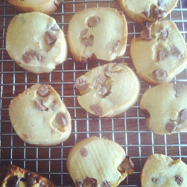 Cinnamon choc chip cookies