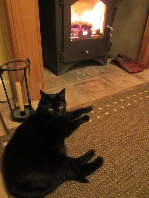 fireside flo (1)