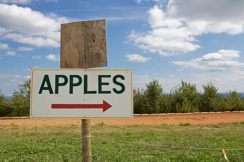 Apple signage