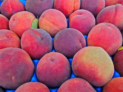 Peachy!  ....(278/366) by Irene.B.