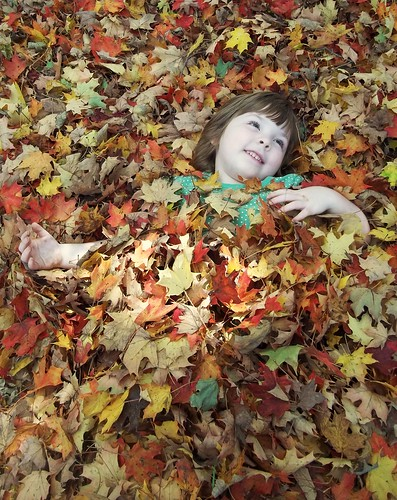 Buried in leaves