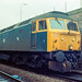 47006 Dundee 1988