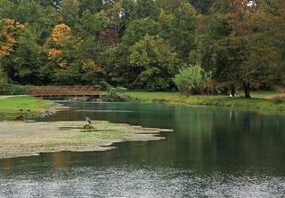 Mammoth Spring Pond