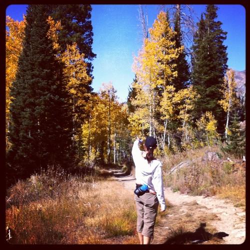 White pine lake trail