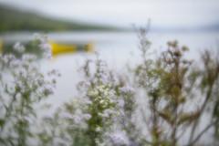 Ouareau 2016