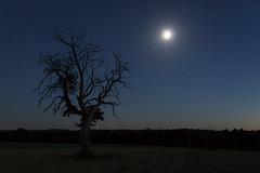 Rencontre Lune-Saturne-Mars-Antares_20160908_B