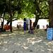 Tree shade at the beach