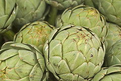 asterales(0.0), thistle(0.0), plant(0.0), vegetable(1.0), flower(1.0), artichoke(1.0), produce(1.0), food(1.0), artichoke thistle(1.0),