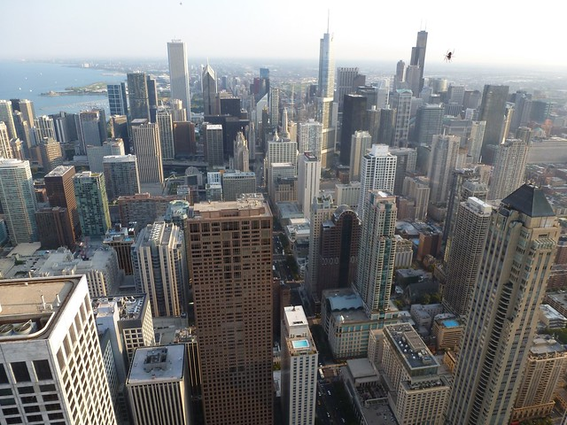 The Spider that Attacked Chicago