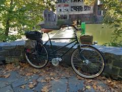Rivendell Mystery Bike