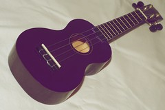 string instrument, purple, violet, ukulele, acoustic guitar, cavaquinho, guitar, acoustic-electric guitar, string instrument,