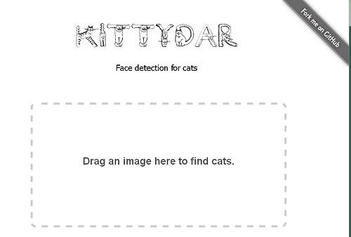 Kittydar1