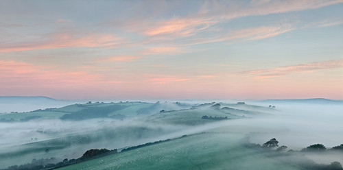 morning mist fog landscape dawn westdorset