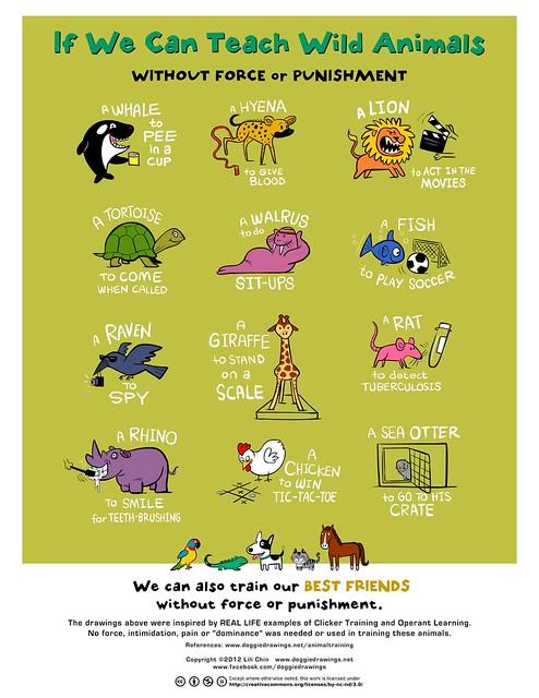 IF WE CAN TEACH WILD ANIMALS...