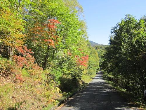 紅葉の始まった散歩道 2012年10月5日0921 by Poran111