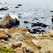 Rocky coast by faungg's photos
