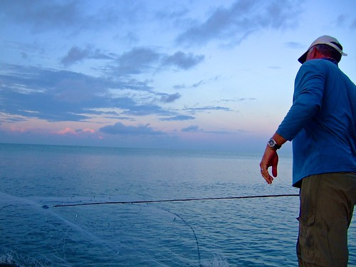 Cast Netting for Live Bait florida bay captain ted wilson