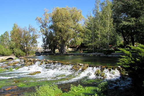 IMG_5856_Giant_Springs_Great_Falls_MT