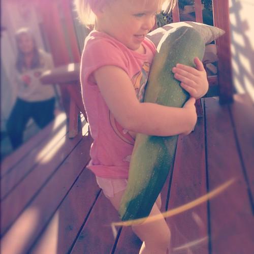 One big zucchini. #gardenfresh #momentswithfifi #shuttersisters #instamuse