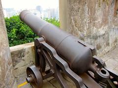 Monte Fort