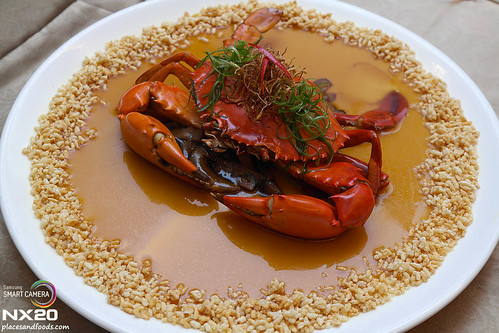 tai thong steamed crab with bean curd whole