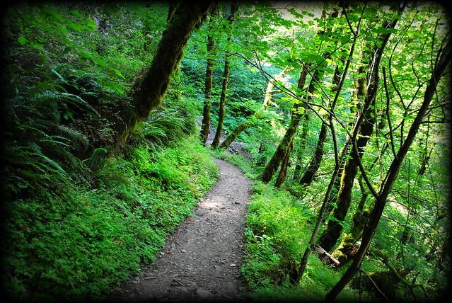 Hike to Triple Falls - Columbia River Gorge