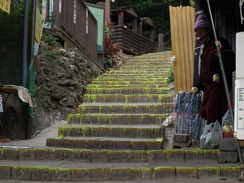 柴山北登山口的螢光漆,高雄市政府所為。(圖片來源:高雄市柴山會)