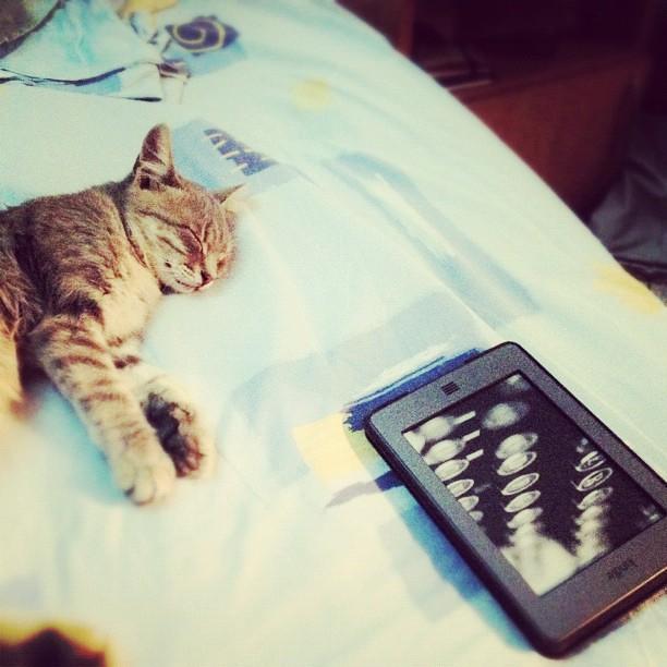 Котуха и Киндл