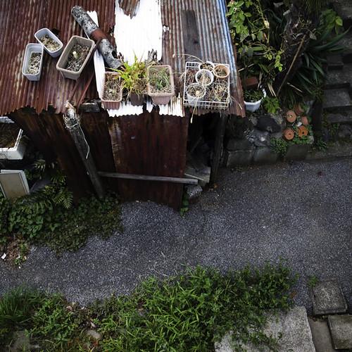Corner Roof Top Garden