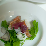 scallop and snapper cevichewith vodka cured salmon, tuna, radish and snow pea shoots