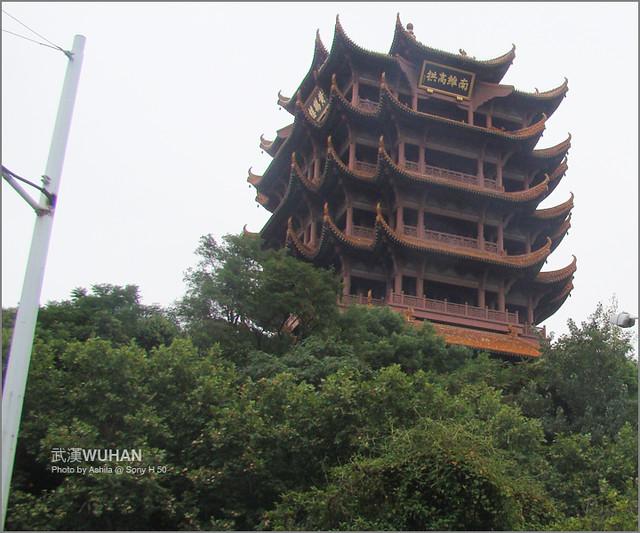 中國行2012_D217
