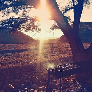 Barbecuing alfresco, in the middle of the desert, under the one lone tree. Cold beers after a long hot dusty ride. The best lamb kebabs I have ever had. Fun photo collaborations in the setting sun with @samhorine @croyable @roeyr @nerdx and @jn | Judean d