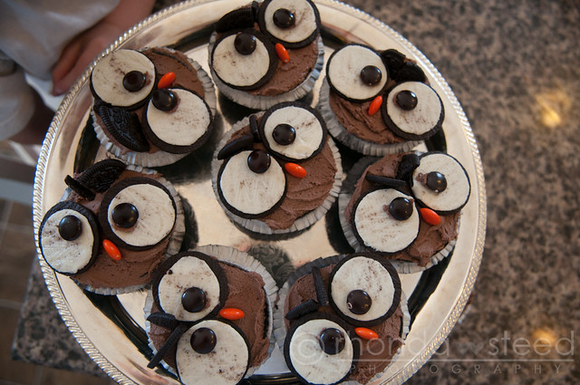 A plate full of cupcakes