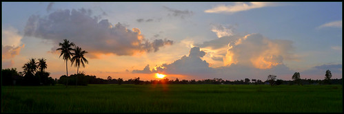 'Tonight's sunset over my favorite rice paddy...'..  25/9/12   Kalasin,  Thailand