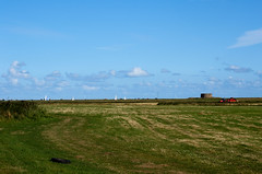 Land Boats and Martello Tower