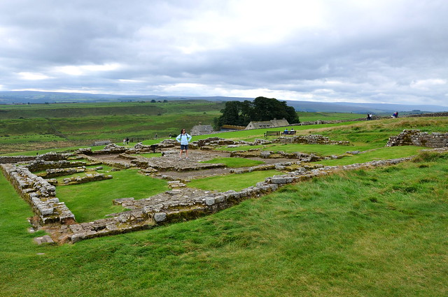 The hospital at Housesteads Roman Fort