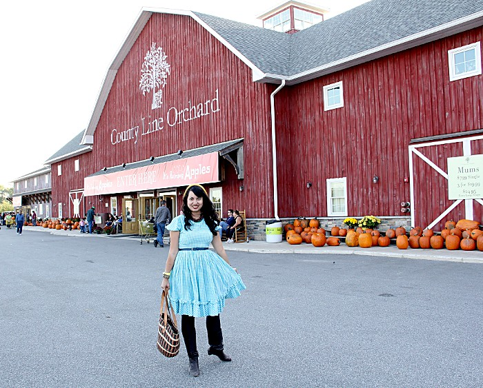 thriftaholic_barn