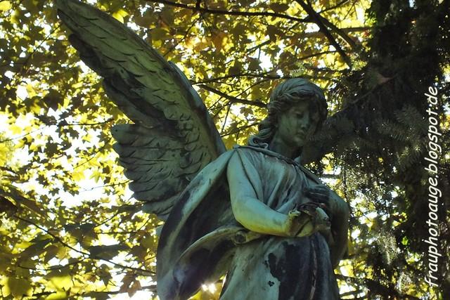 Friedhof Melaten / Köln