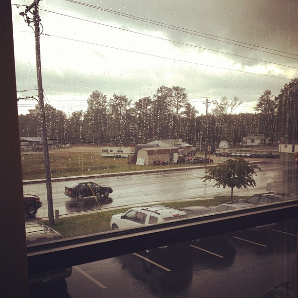 Thoroughly enjoying watching the steady rain from outside my office window.