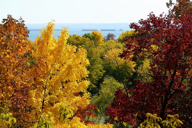 Fall Colors at the Lakefront