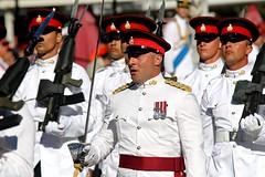 A Royal Parade 451
