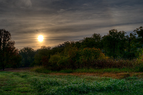 park morning autumn trees light sky plants sun color green fall nature wet field grass weather clouds contrast rural sunrise landscape weeds shine view time earth scenic atmosphere sunny hills torch pasture dew kansas backlit prairie