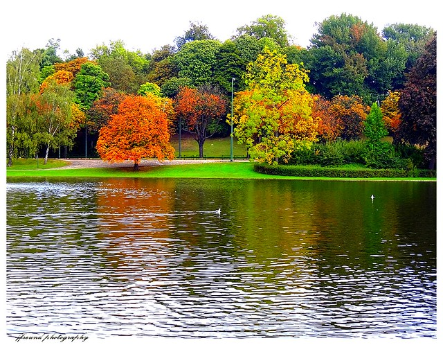 woluwe saint pierre guys Hi guys i'm kathi and here  woluwe-saint-lambert & woluwe-saint-pierre a residential area with a lot of parks  the parc de woluwe is perfect for walks,.