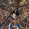 Sunday climbs #marrickville #enmorepark #poppyparker