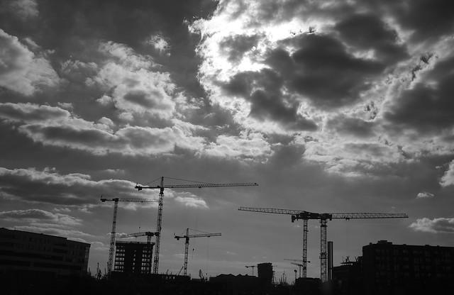 Kräne - Cranes
