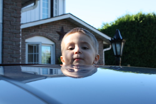 Wordless Wednesday: Sunroof