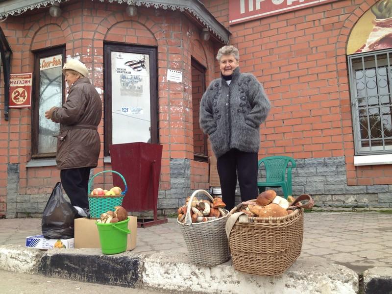 Mushroom period in Russie